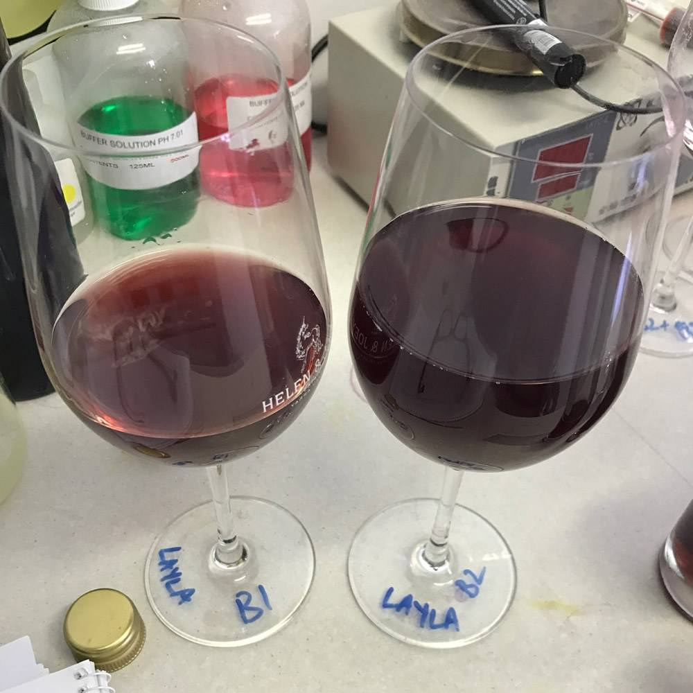 Layla Pinot Noir blends October 2016 at Helen and Joey Estate
