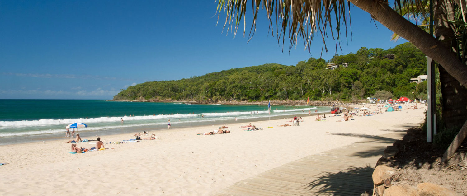 Photo of Noosa beach foreshore on sunny day