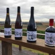Wayward Child Wines