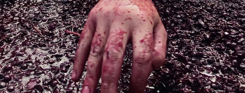 Hand in hand mDE